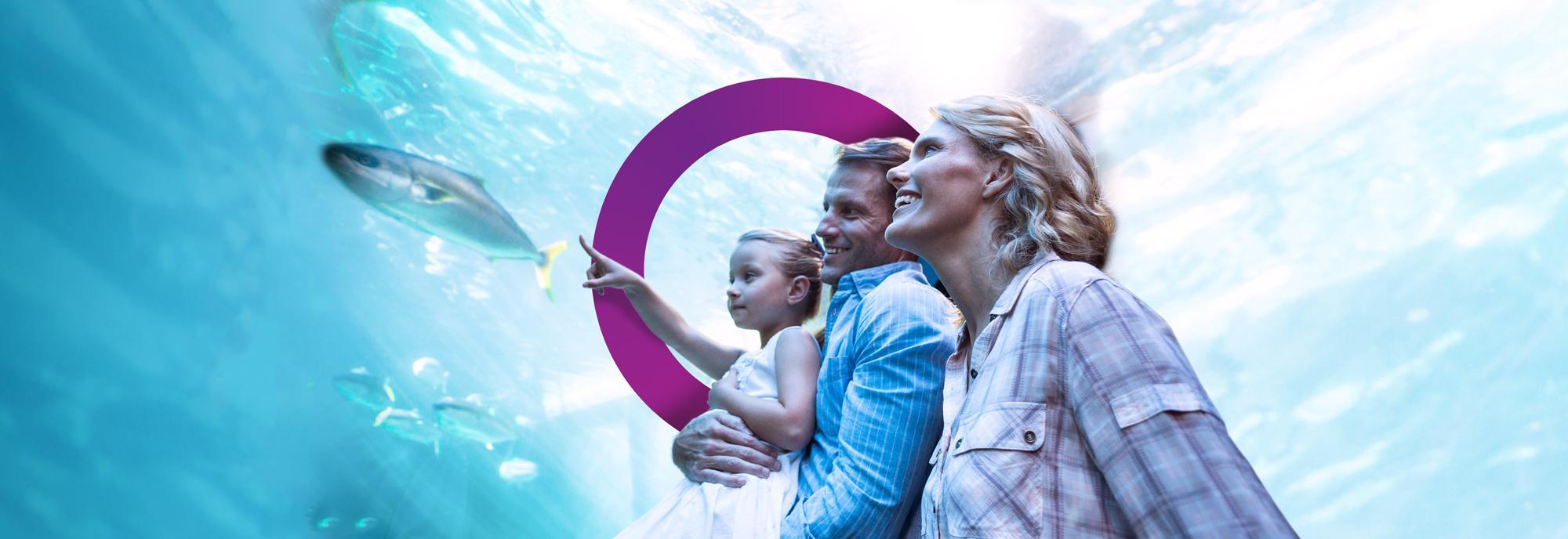 Aquarium (Visitor Attraction)